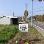 地元電力農園